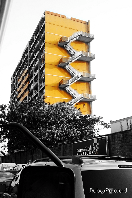 The Yelow wing, 1004 Estate VI by rubys polaroid