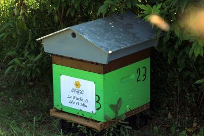 parrainer ruche 5- rucher de marandou