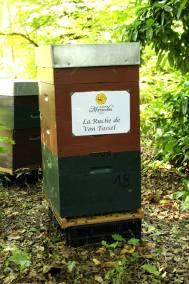 parrainer ruche 39 - rucher de marandou