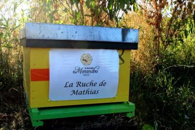 parrainer ruche 26- rucher de marandou
