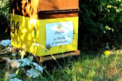 parrainer ruche 18 - rucher de marandou