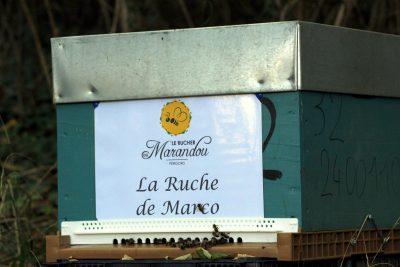 parrainer ruche 21- rucher de marandou