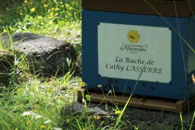 parrainer ruche 7 - rucher de marandou