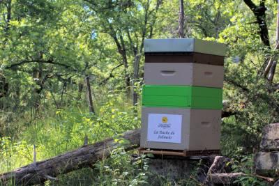 parrainer ruche 9 - rucher de marandou