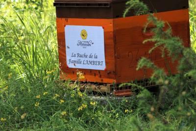 parrainer ruche 37 - rucher de marandou