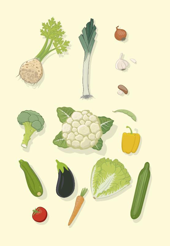 Bildtafel: Gemüse