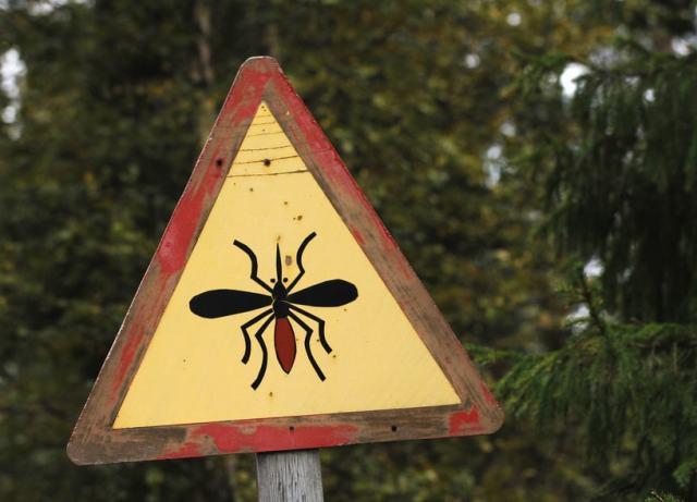 Erhöhtes Mückenstich Risiko in gewissen Ländern