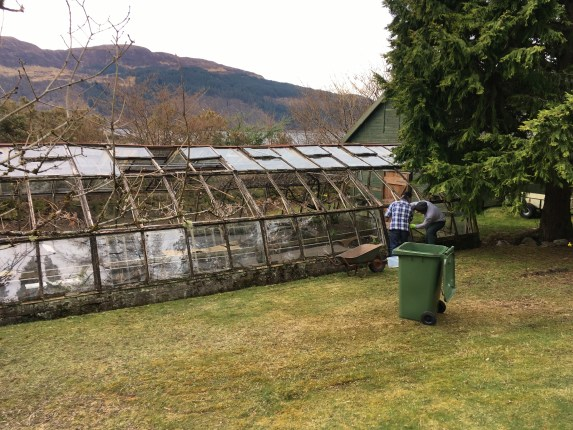 removing glass from old greenhouse