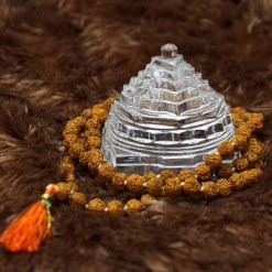 Crystal Shree Yantra Archives – Rudrapuja