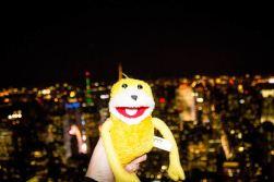 Empire State Building, das war schön
