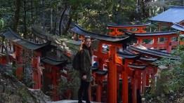 The roofs of Fushimi Inari
