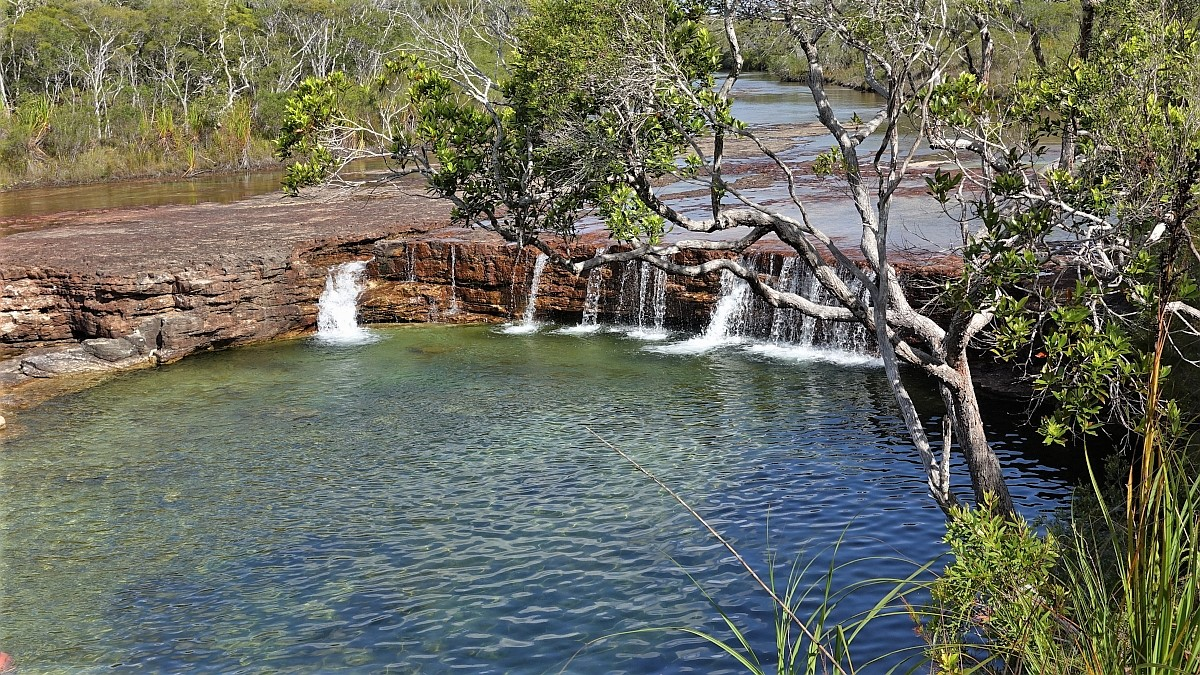 fruit bat falls cape york australia