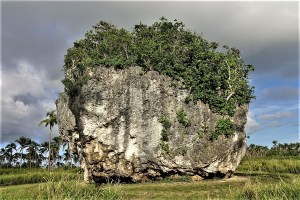 Tsunami Rock Tonga