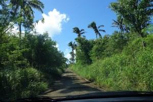 road in Tongatapu
