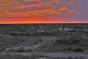 Sunset in the Kazakh steppe