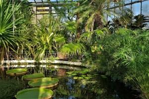 Botanical Garden Cluj-Napoca, Romania