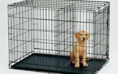 crate training, dog cage