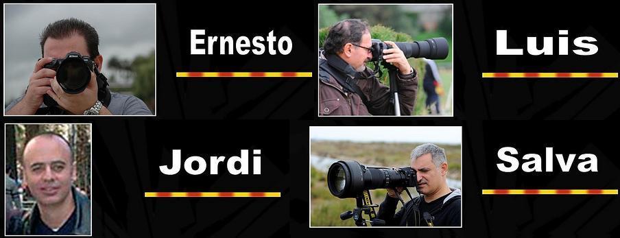 fotografs