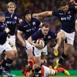 armorof_scotland-home-rugby-ラグビースコットランド_レプリカジャージ_個人輸入_海外通販_イギリス_カンタベリー_canterbury_rugby56