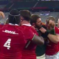 Lions Fullback Stuart Hogg Releases Statement Following Biting Allegation
