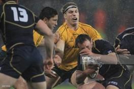 Rugby Union Wallabies v Scotland at Stadium Newcatle, Sydney, Australia. Tuesday June 5th 2012. Photo:( Steve Christo).