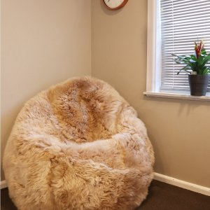 Bean Bags in New Zealand