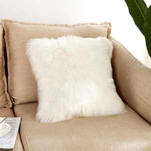 Cushion Decor