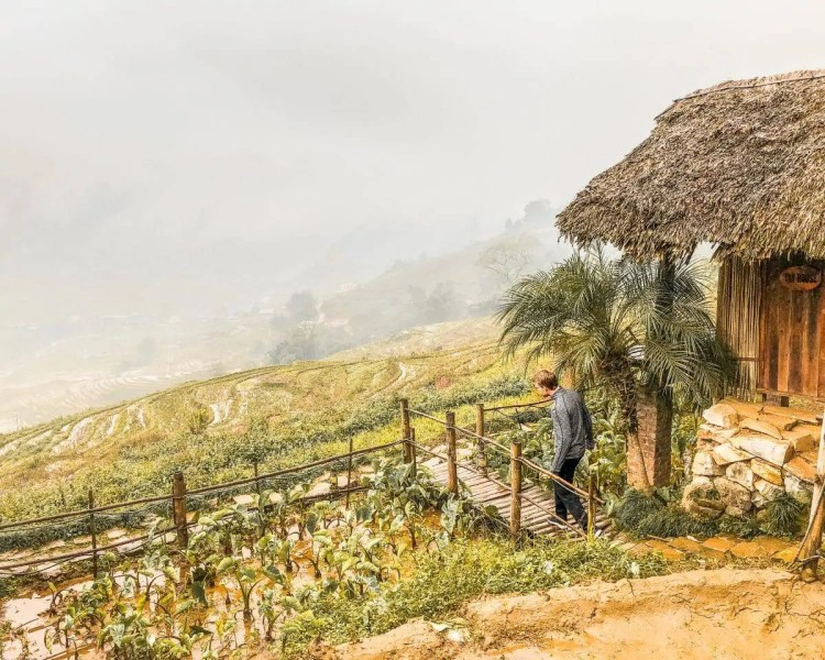 rice terraces vietnam, vietnam rice fields, rice fields vietnam, vietnam rice field, silver waterfall sapa vietnam, hanoi to sapa, rice paddies vietnam, sapa from hanoi, snow in vietnam, sa pa se, love waterfall sapa, love waterfall vietnam, sapa horizon hotel, fansipan cable car, muong hoa valley, fansipan outdoors, cat cat village, mu cang chai vietnam, eco palms vietnam, vietnam mountains, sapa extrusions, sapa eco home mountain retreat, what to do in sapa vietnam, sapa tour, sa pa
