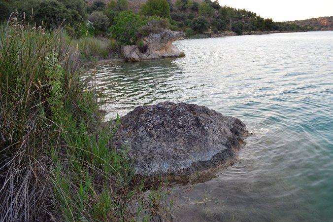 Los hongos sumergidos de las Lagunas de Ruidera