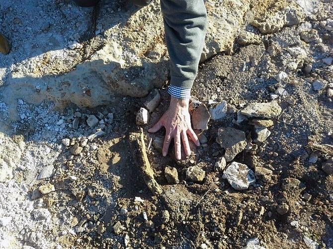 Restos prehistóricos de un enterramiento