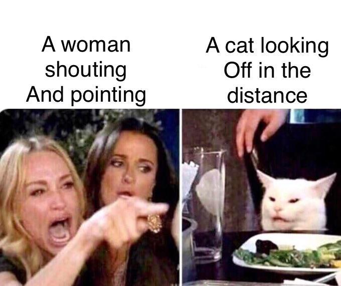 Woman Yelling At Cat Meme Is Still Going Strong 31 Memes