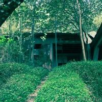 東伊豆の静かな廃病院:稲取隔離病棟(静岡県東伊豆町)