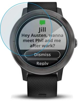 Flipkart SmartBuy Tempered Glass Guard for Garmin Vivoactive 3
