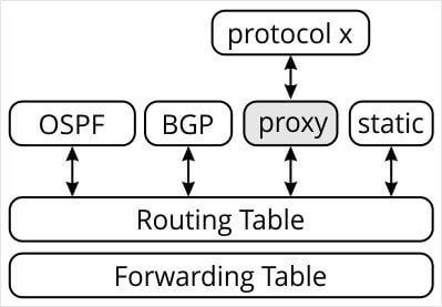 rib-fib-remote-proxy