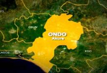 Pastor rapes teenager in Ondo, Police arrest masqueraders for robbery in Ondo, 26-year-old man kills father over chicken head, Five injured as lover storms party with gun over girlfriend's presence, Landlord's son kills tenant