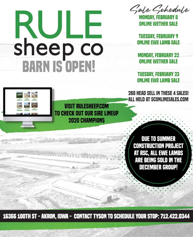 Rule Sheep Co.