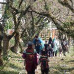 Hiking Bocah Bogor