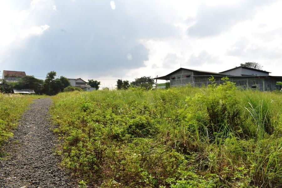 Tanah Dijual di Cibarusah Cikarang