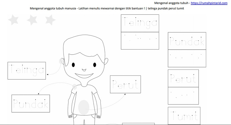 Mengenal Anggota Tubuh Untuk Anak Anak Rumah Pintar
