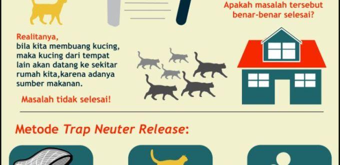 TNR: Mengapa Membuang Kucing Bukan Solusi?