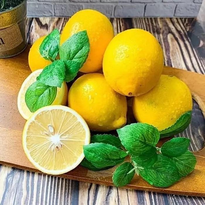 lemon amerika