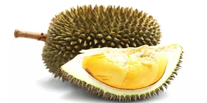 manfaat dan efek durian monthong 1