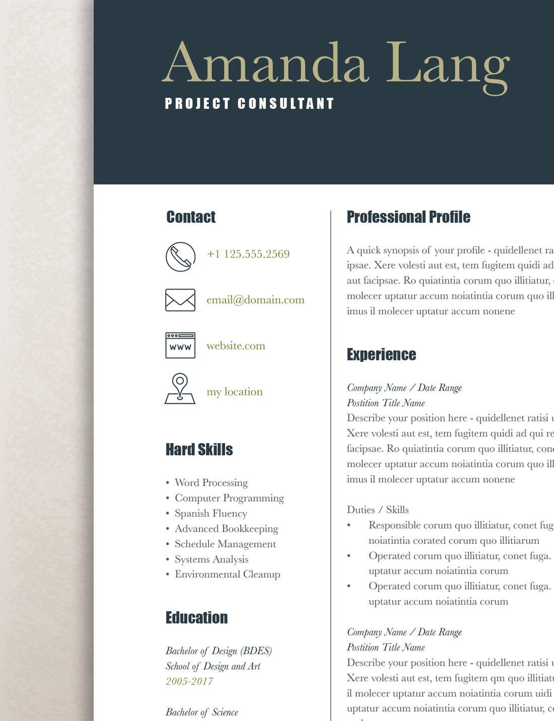 Modern Resume Template, Professional Resume Template Word Modern  Professional Resume