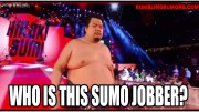 Who Was This Sumo Jobber and Why Was He In The Greatest Royal Rumble?