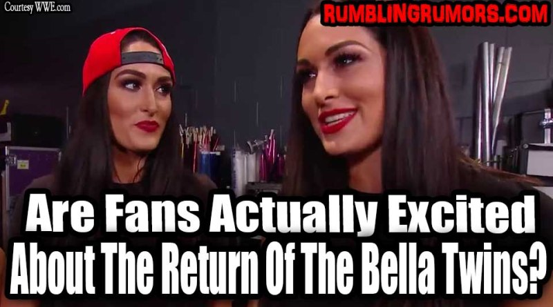 BELLA TWINS RETURNING