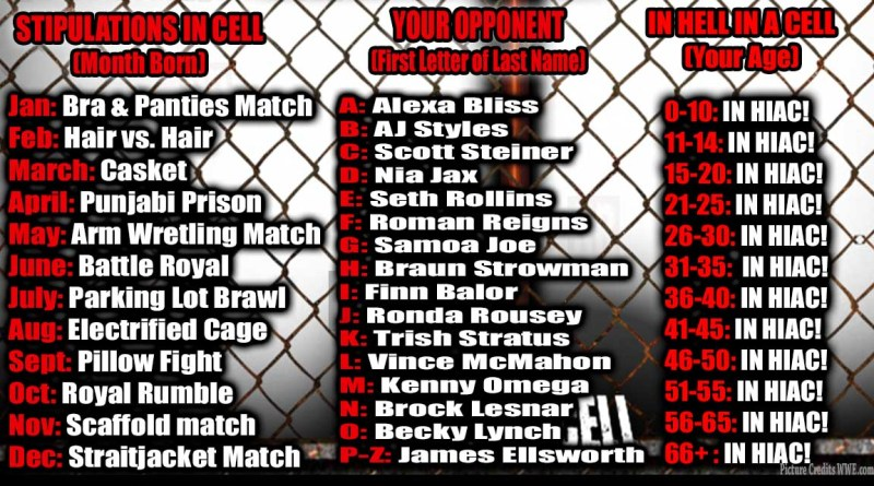 YOUR HELL IN A CELL MATCH (Interactive MEME)