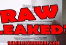 "WWE ""NEW"" RAW FORMAT SHEET LEAKED ONLINE?"