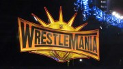Every Participant In The 2019 Women's Wrestlemania Battle Royal