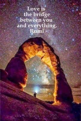 Rumi Quotes In Hindi (9)