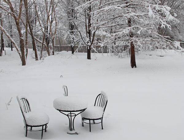 backyard-after-2nd-snow